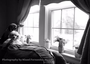As we sit by the window - Photography by: Misael Fernandez Jr.