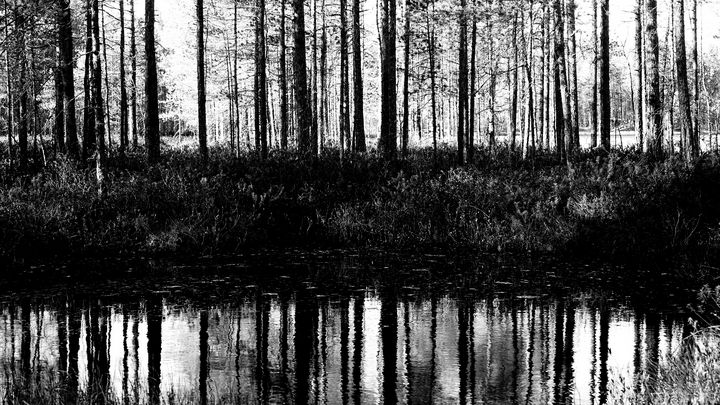 Mirror - SevdaK