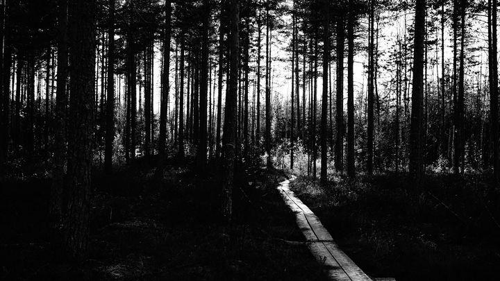 Path - SevdaK