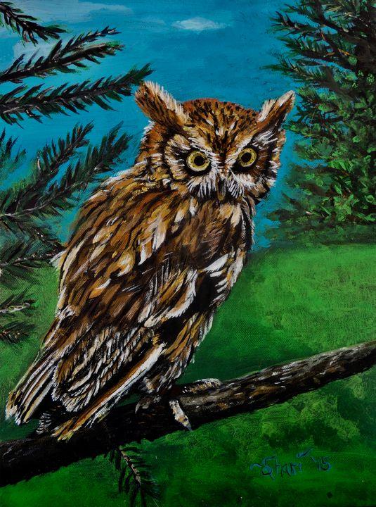 Wise Old Owl - Shari Riepe