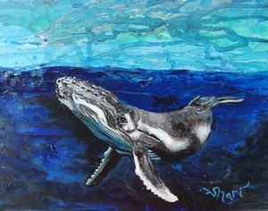 Peaceful Whale