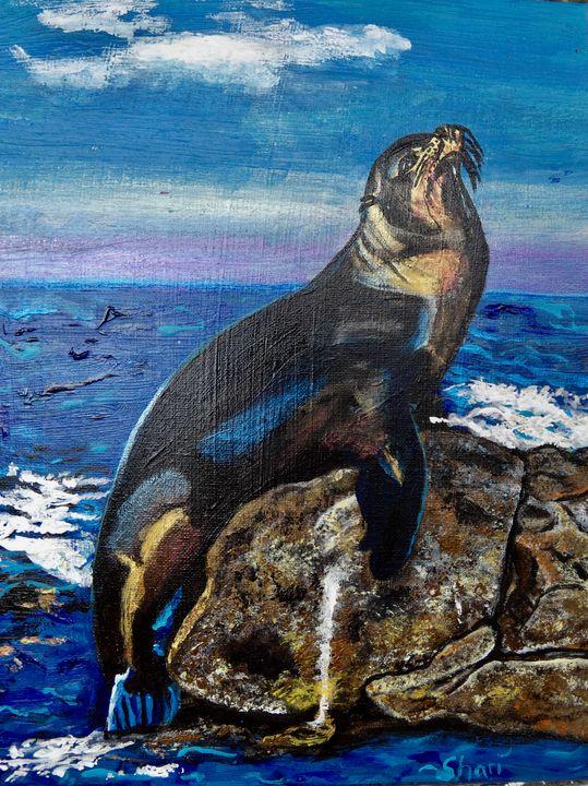 Meditating Sea Lion - Shari Riepe