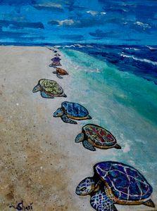 Sea Turtles Journey