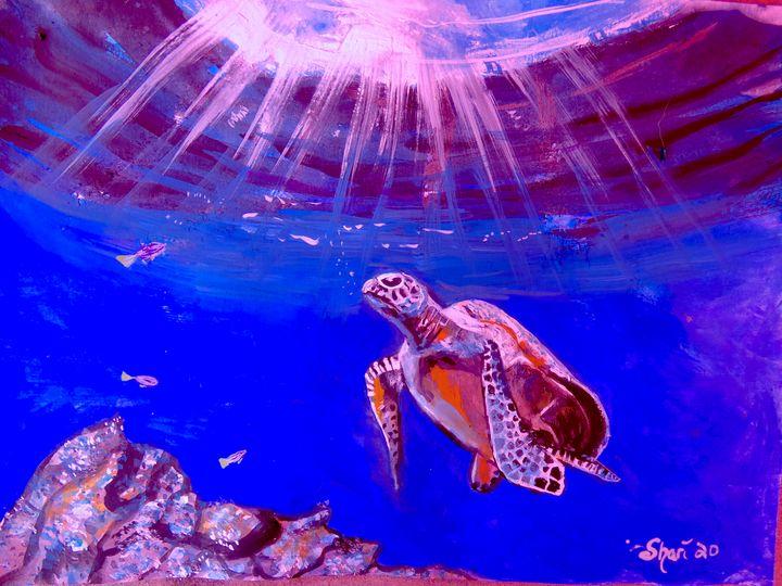 Swim To The Light - Shari Riepe