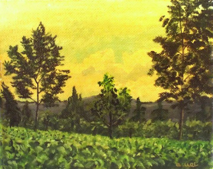 Tea Plantation - Artscapes