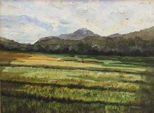 Paddy Field - Artscapes