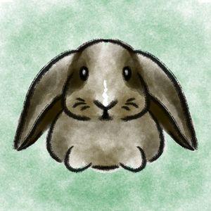Pets - Bunny - Shy Blueberry