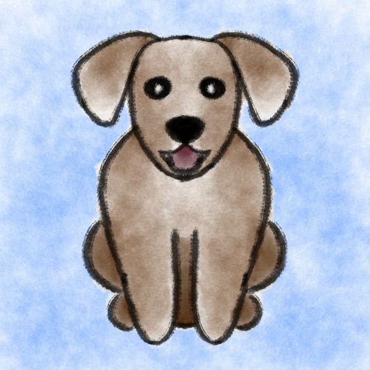 Pets - Dog - Shy Blueberry