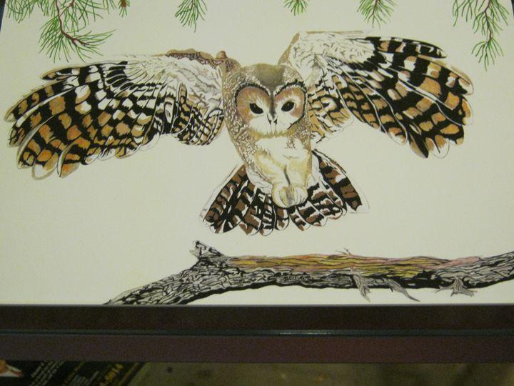 owl - lasting impressions artwork