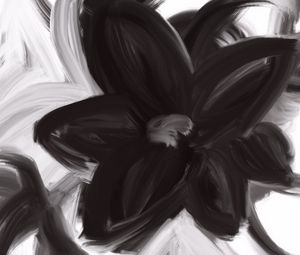 Lovely Flower in black and white - SuArt