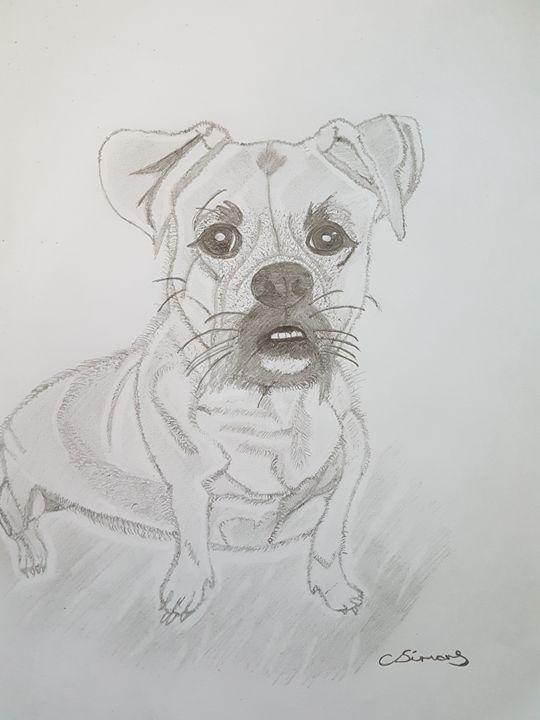 Dog sketch - Handpencil