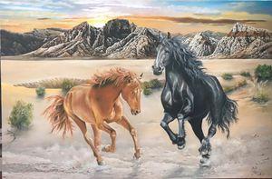 Two wild horses in the desert