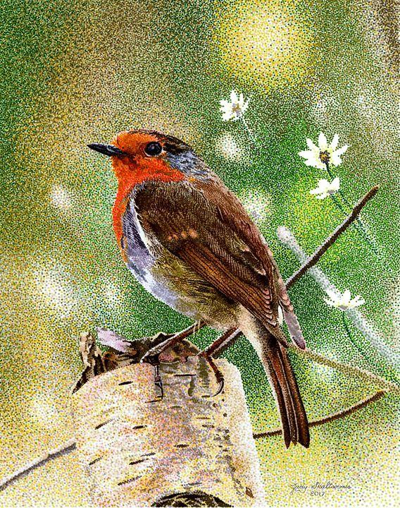 Little Robin - Pointillism Art by Judy