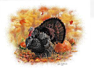 Wild Turkey - Pointillism Art by Judy