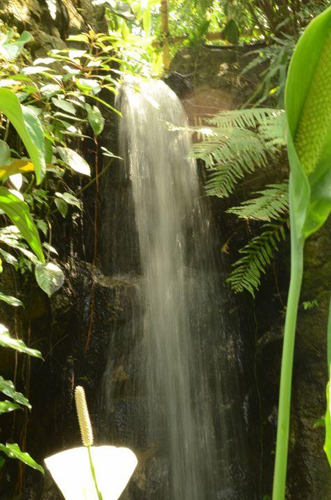 Waterfall - Cozie Cat Creations