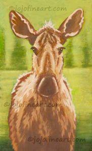 Pretty Moose