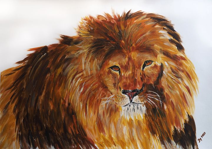 African lion - By Mris