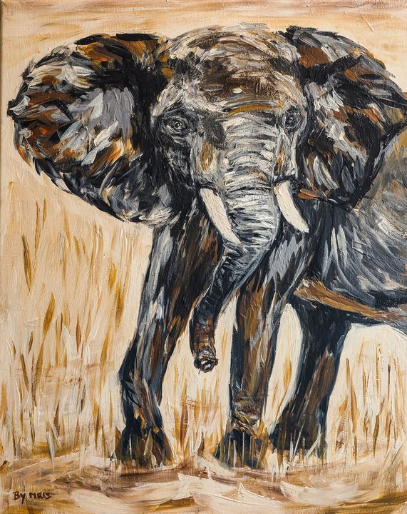 African elephant - By Mris