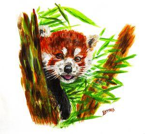 Cute red panda portrait