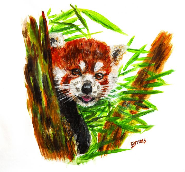 Cute red panda portrait - By Mris