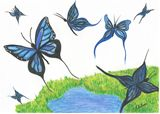 Original Butterfly Watercolor