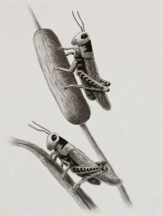 Grasshoppers On Cattails - JK Art Life