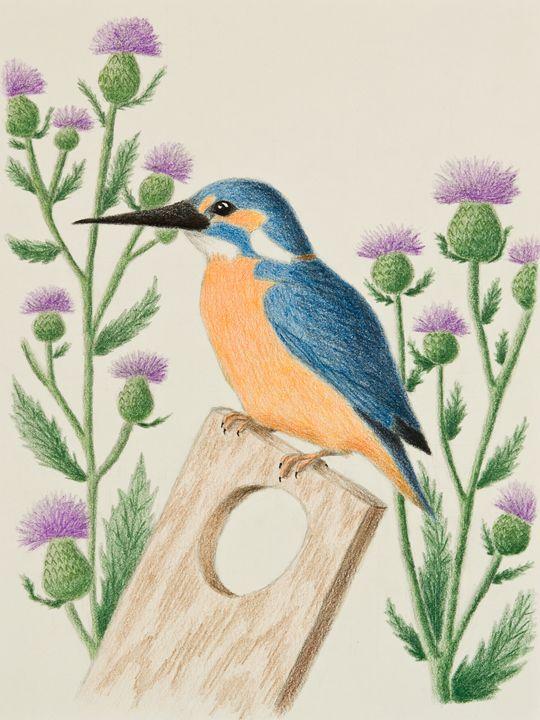 Kingfisher - JK Art Life