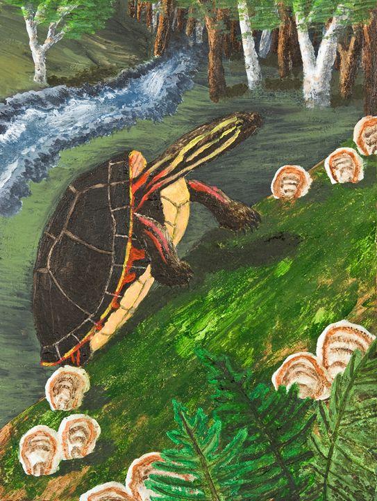 Painted Turtle - JK Art Life