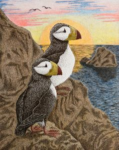 Puffin On Sunset Cliff - JK Art Life