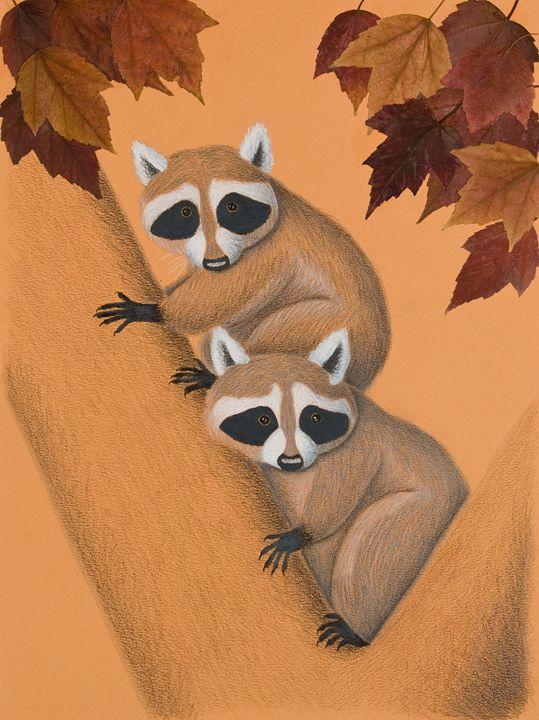 Fall Raccoons On Tree - JK Art Life