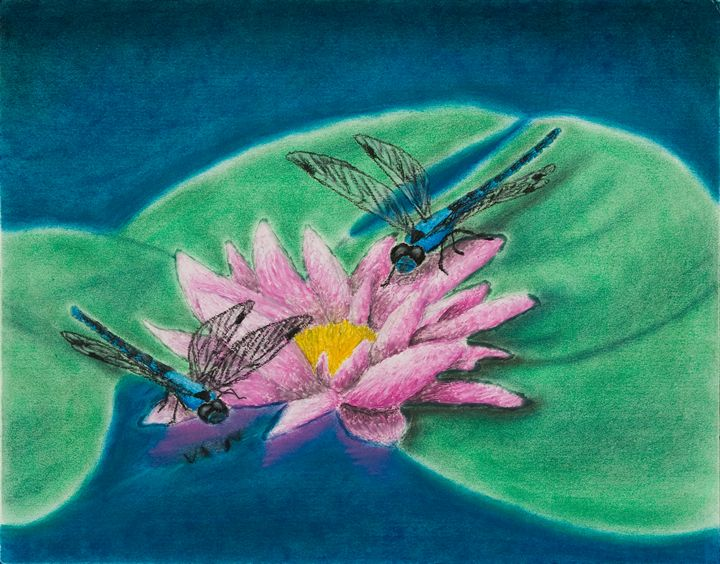 Dragonflies On Water Lily - JK Art Life