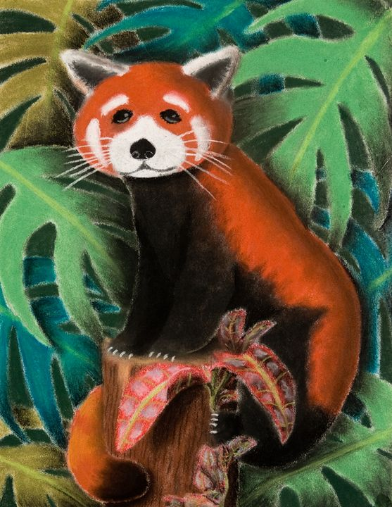 Red Panda - JK Art Life