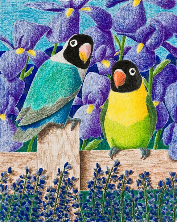 Black-faced Lovebirds - JK Art Life