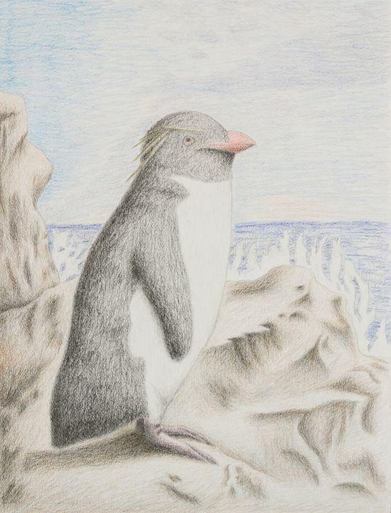 Rockhopper Penguin - JK Art Life