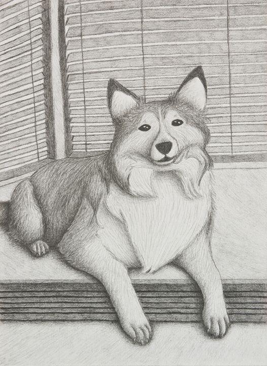 Shetland Sheepdog - JK Art Life