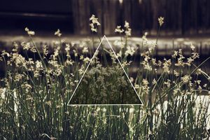 Triangle in Nature