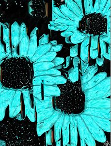 Inverted Daisies