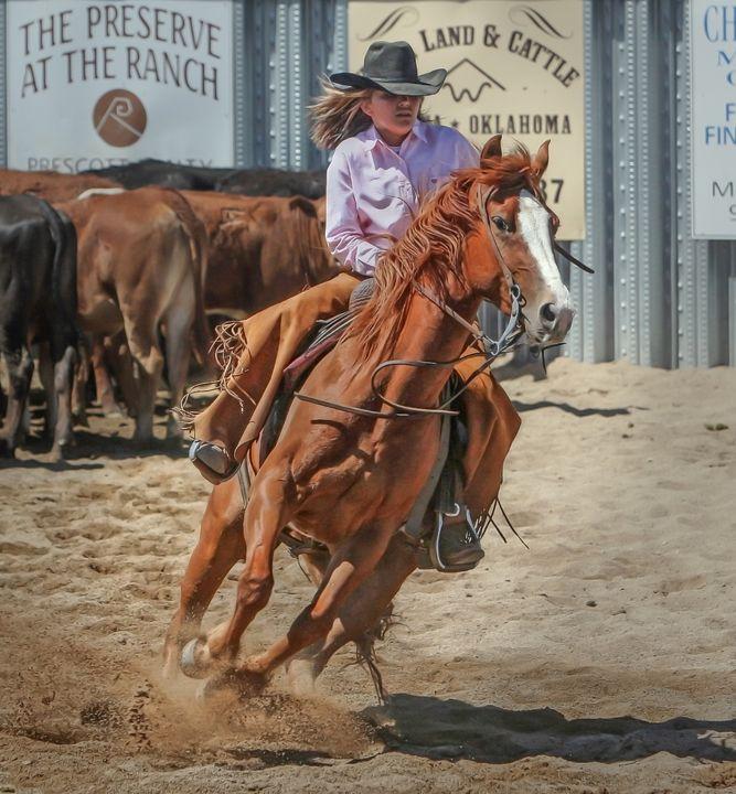 Cowgirl on Horse - Amazing Photography