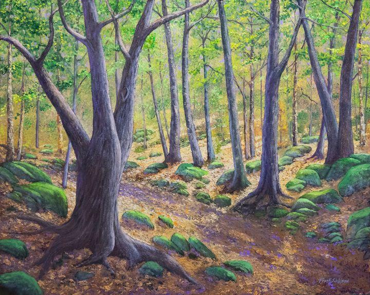 Vermont Woodland Spring - Frank Wilson