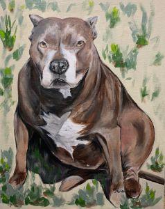 """Backyard Pittie@ - The Benevolent Bear Art Studio"