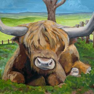 """Scottish Highland Cow At Rest"" - The Benevolent Bear Art Studio"