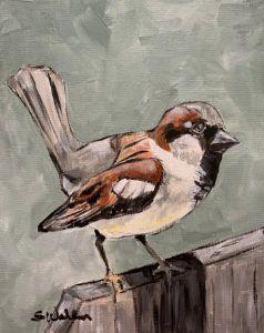 """House Sparrow II"" - The Benevolent Bear Art Studio"