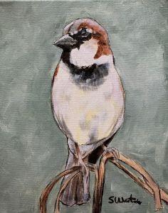"""House Sparrow I"" - The Benevolent Bear Art Studio"