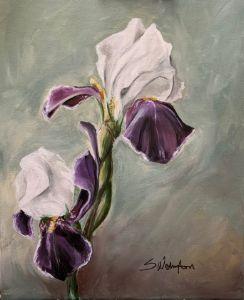 Purples Irises - The Benevolent Bear Art Studio