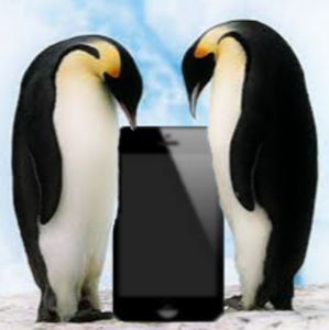 Penguin Iphone