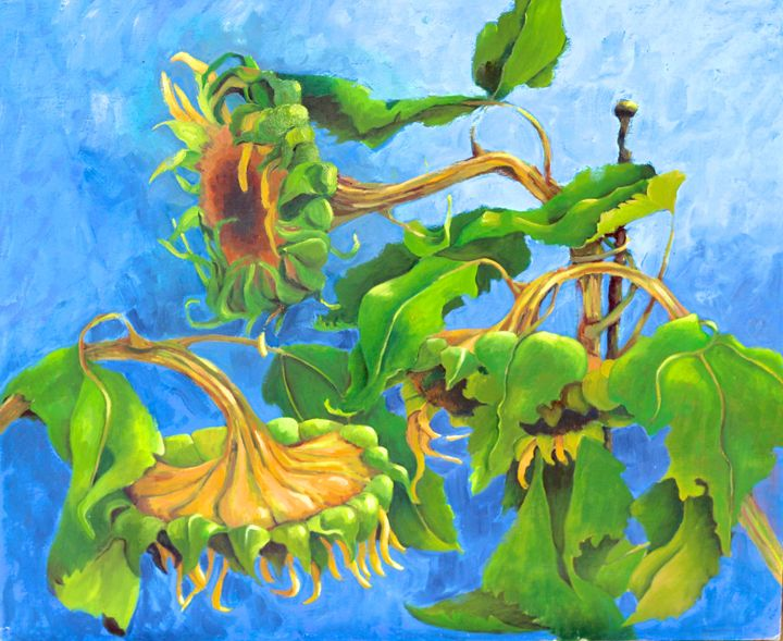 Sunflowers - Mary Roberts Pictures