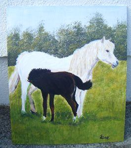 Connemara Pony and Foal