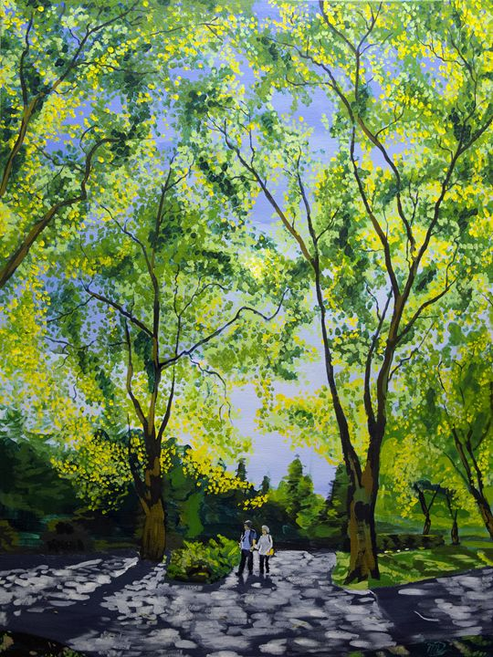 Trees in Stanley Park - Michael Dyer