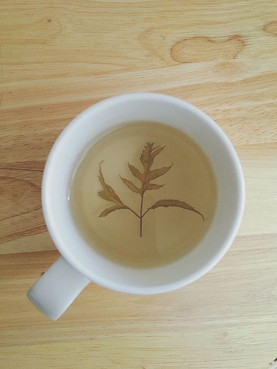 Yellow tea cup - my dentist