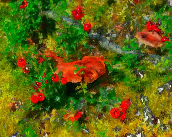 FOREST FLOOR - DIGITAL ARTOGRAPHY